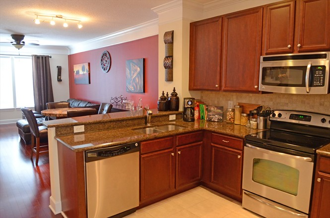 Tapestry Park Condo For Sale #201 - Kitchen / Living Area
