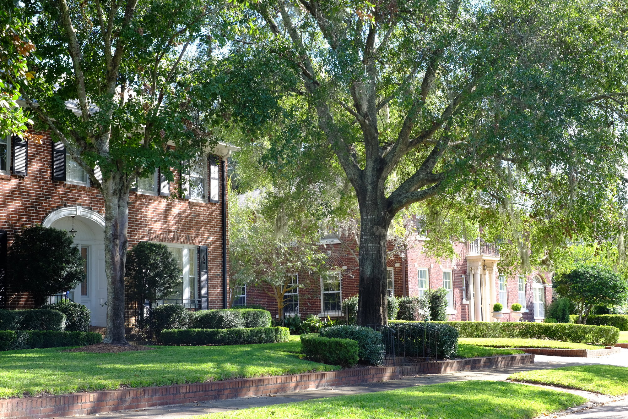 Historic homes and tree lined sidewalks in Avondale Jacksonville